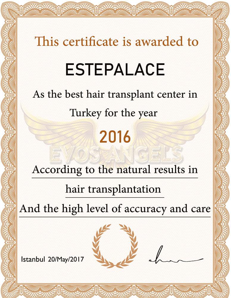 Evos-angels-award-2016