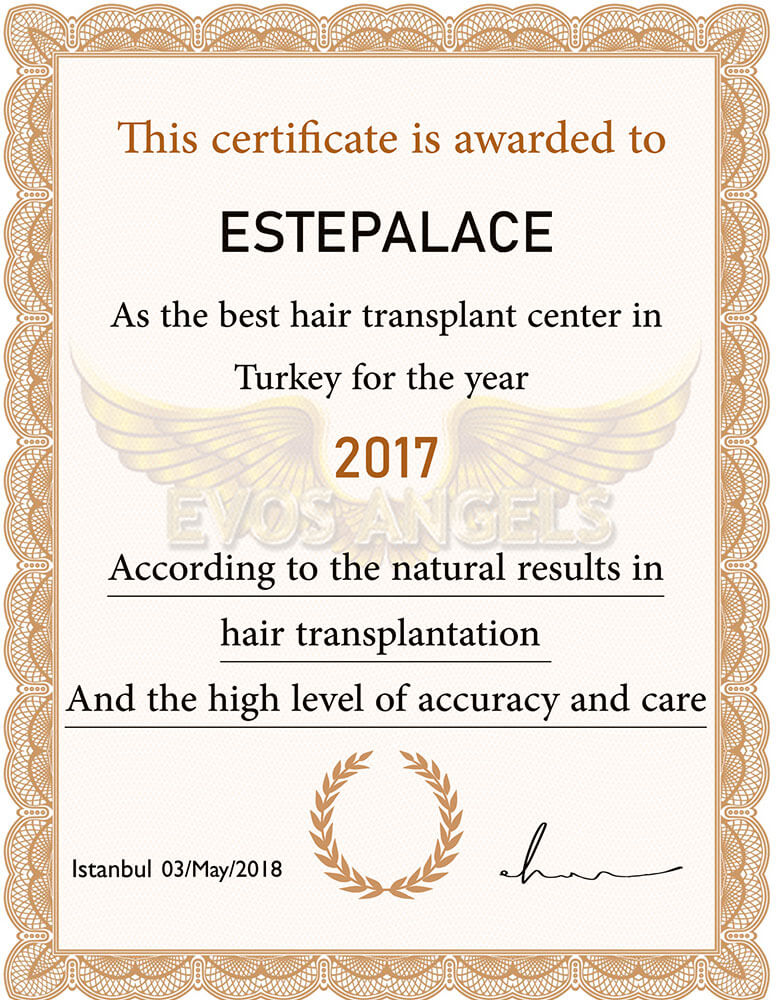 Evos-angels-award-2017